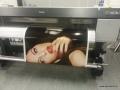 autocolant printat  6.jpg