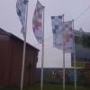 Steaguri poza Nr.1